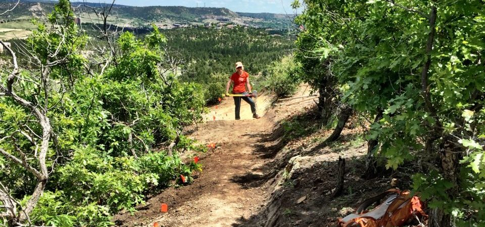 Joint Trail Work with Friends of Ute Valley Park
